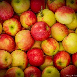 Bulk apples
