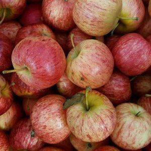 Bulk Juicing Apples
