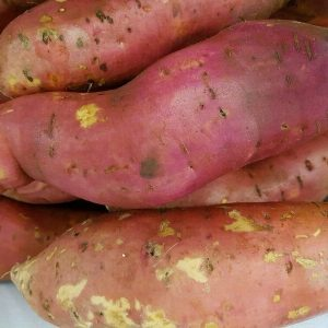 Bulk Sweet Potato
